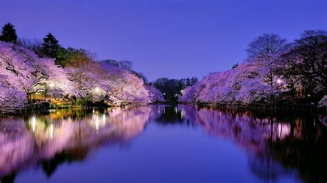 38 Beautiful Japan Wallpapersthe Land Of Rising Sun