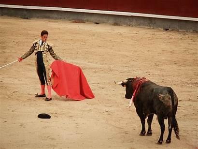 Bullfighting Ventas Las Hill Bull Cityseeker Ring