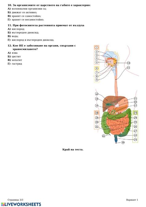 Човекът и природата входно ниво 6 клас worksheet
