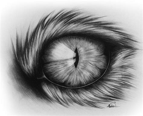 The Gallery For > Cool Drawings Of Eyes Tumblr