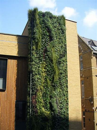 Wall Westminster Biotecture Biodiversity