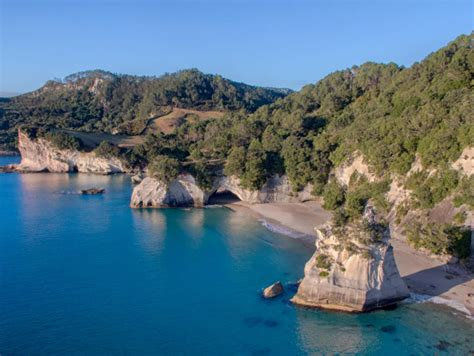Glass Bottom Boat Tours Nz by Glass Bottom Boat Cathedral Cove Whitianga Boat Tour