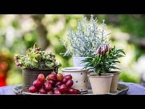 Kreativ Im Herbst : fleur kreativ floristik und blumen f r den herbst youtube ~ Lizthompson.info Haus und Dekorationen