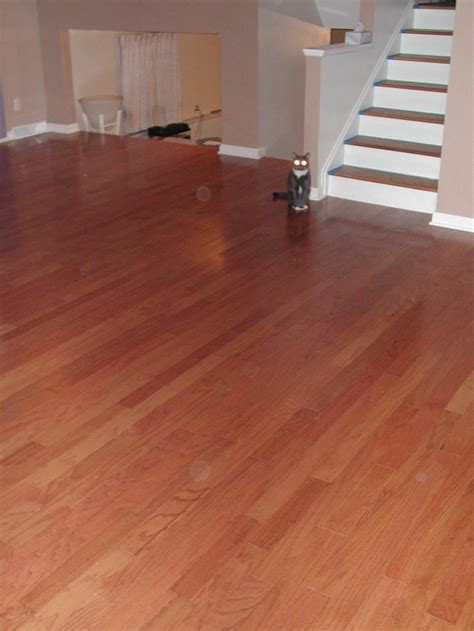 laminate wood flooring wiki enchanting topstyler heated ceramic styling shells by instyler modern ceramic heated ceramic