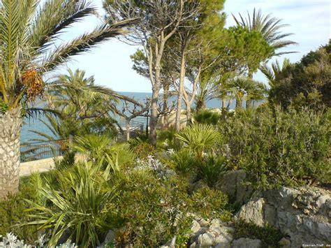 Der Garten Auf Spanisch der garten papa auf pe 241 237 scola spanien spanien