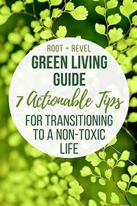 Green Living Guide  7 Ways To Transition To A Non