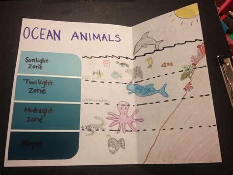 Best 25+ Ocean Activities Ideas On Pinterest