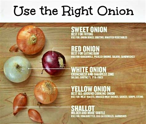 types of onions types of onions and how to use them cooking tips tricks pinterest how to use types of