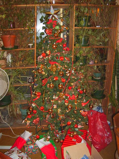 28 best saturnalia christmas tree 64 best images about
