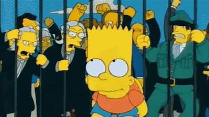 Audience Simpsons Trolled Blatantly Times Fox
