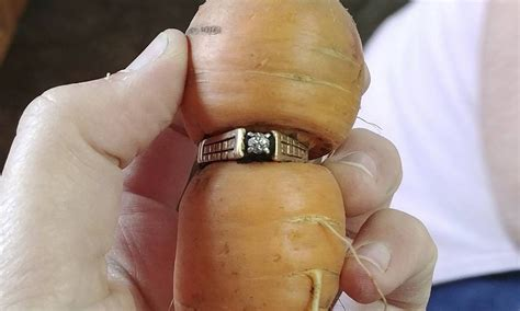 anel de diamante perdido ha  anos  encontrado em