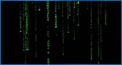 Matrix Screensaver Linux Rain Ubuntu Screensavers Biz