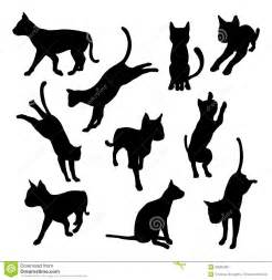 Jumping Cat Silhouette