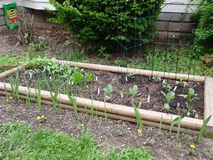 Heather U0026 39 S Vegetable Garden  Garden Layout