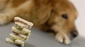 Hundekuchen Selber Backen : hundekekse selber backen 10 2 rezepte die dein hund lieben wird moe me ~ Frokenaadalensverden.com Haus und Dekorationen