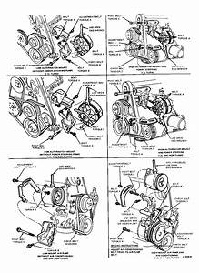 1984 Ford F150 Belt Diagram