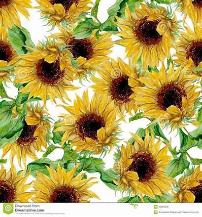 Watercolor Pattern Sunflowers Yellow Girasoli Dipinti Zonnebloemen