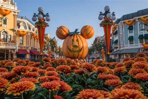 disneyland unveils sweet halloween  season  disney blog