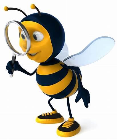 Bee Bumble Cartoon Cartoons Clipartmag