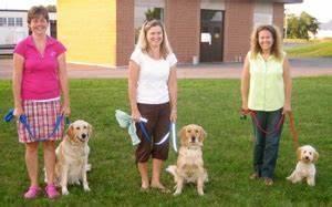 Testimonials for precision k9 for Precision dog training