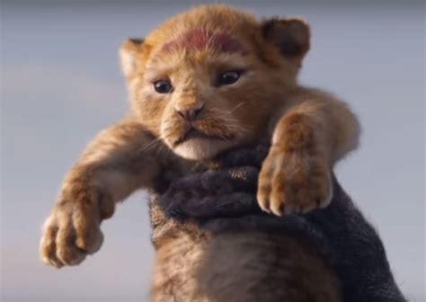 lion king  action   feature top black