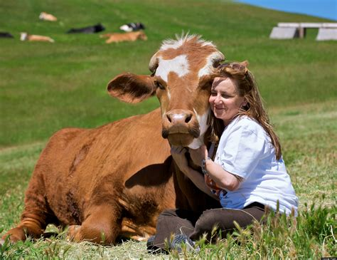 farm sanctuarys animal acres hug  farm animal day