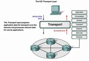The OSI Transport Layer « Belichev