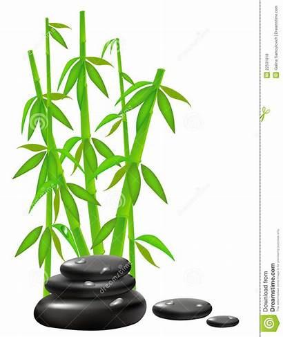 Bamboo Zen Stones Background Stone Royalty Wellness