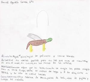 Textos producidos por los niños Proyecto Gulliver 2012