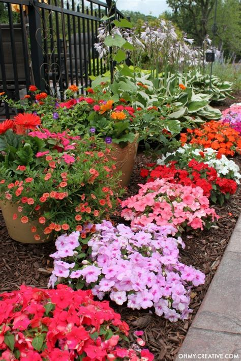 Garden Of Flowers by How To Grow Beautiful Flowers Oh My Creative