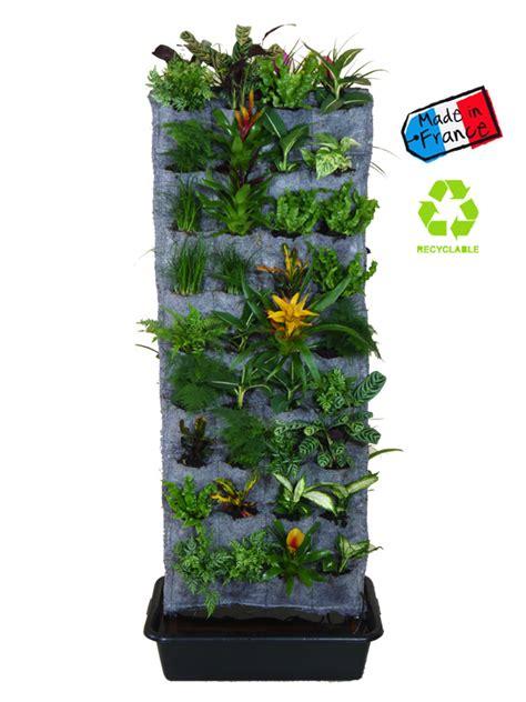 plantes pour chambre mur végétal grinwall en kit