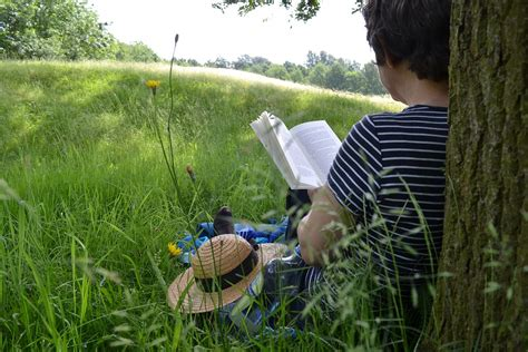 Family Garden Reading Pa by Library Rondout Valley Junior High School