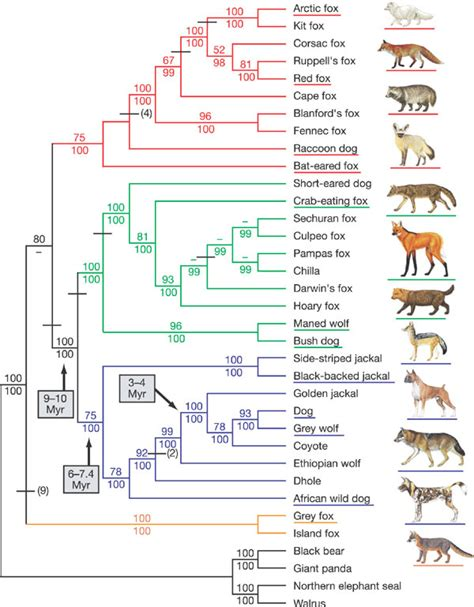 february  natural history