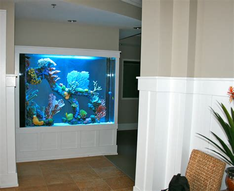 gallon marine aquarium room divider  faux reef