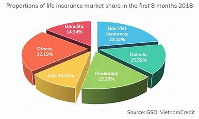 Insurance Companies Vietnam Biggest Stage Early Rigorous
