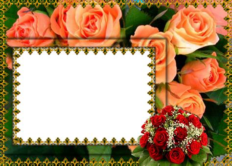 Cornici Foto Photoshop Photoshop Png Frames Wallpapers Designs Flower Frame Pack