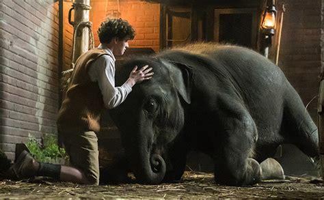 zoo trailer  irish lad   save  baby elephant