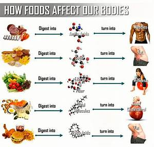 Regular Healthy Diet Chart Balanced Diet Bodybuilding And Fitness Zone