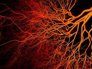 Nanoparticles Control Blood-vessel Growth