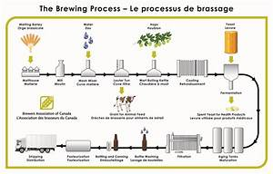 The Brewing Process