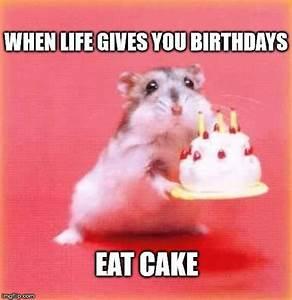 Best 25+ Happy birthday ideas on Pinterest | Happy ...