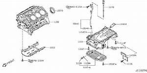 Infiniti Qx50 Cover Plate   Rear   Vg U00c7