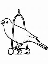 Canary Coloring Pages Bird Cage Birds Printable Getcolorings Template sketch template