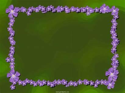 Purple Border Flower Desktop Background Flowers Iris