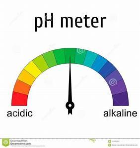 Ph Scale  Litmus Paper Color Chart  Vector Illustration