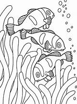 Coloring Fish Pages Clown Fishes Anemone Sea Ray Loaves Goldfish Printable Drawing Tank Bowl Preschool Tocolor Getcolorings Nemo Getdrawings Heart sketch template