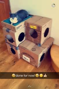 diy cardboard cat house diy cat house made of cardboard boxes cats