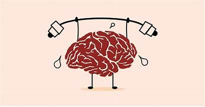 Brain Health Memory Function Mental Workout Fitness