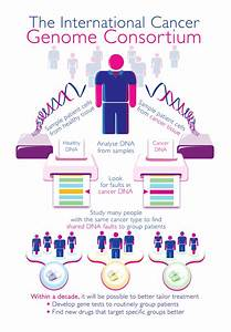 Cracking The Cancer Code  U2013 The International Cancer Genome