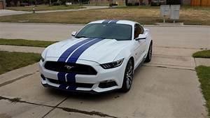 Stripe on White mustang | 2015+ S550 Mustang Forum (GT, EcoBoost, GT350, GT500, Bullitt, Mach 1 ...